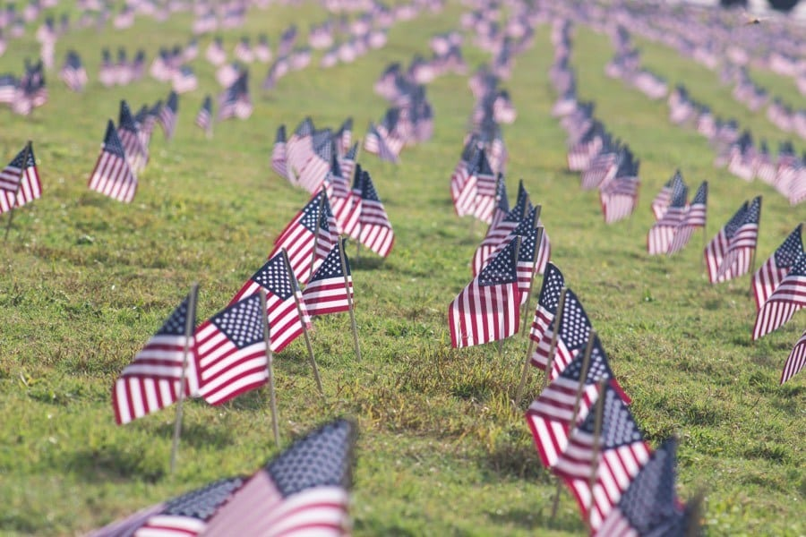 American flags in a field