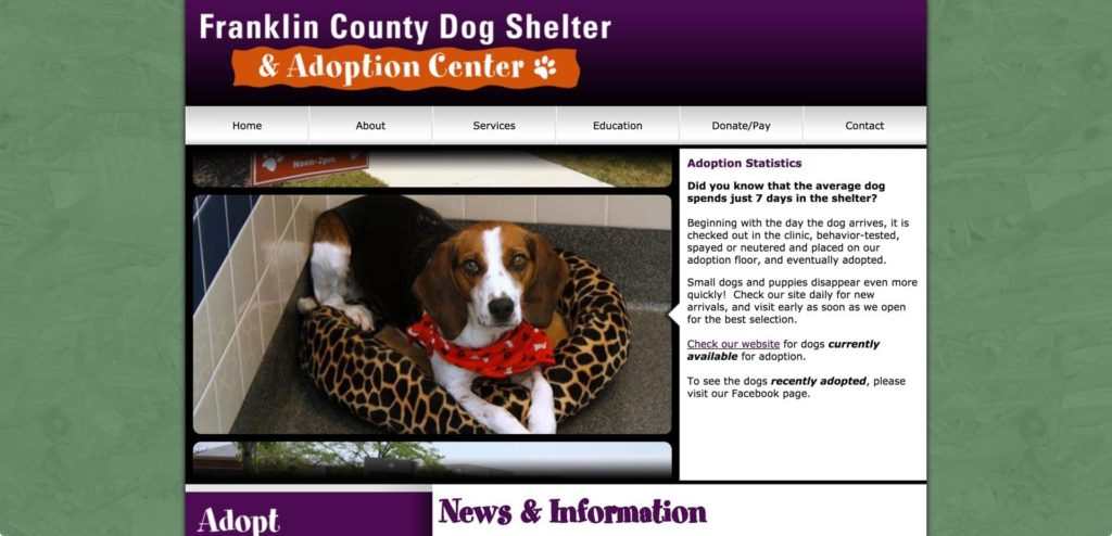 7b583b2229cb What Is Going On At The Franklin County Dog Shelter