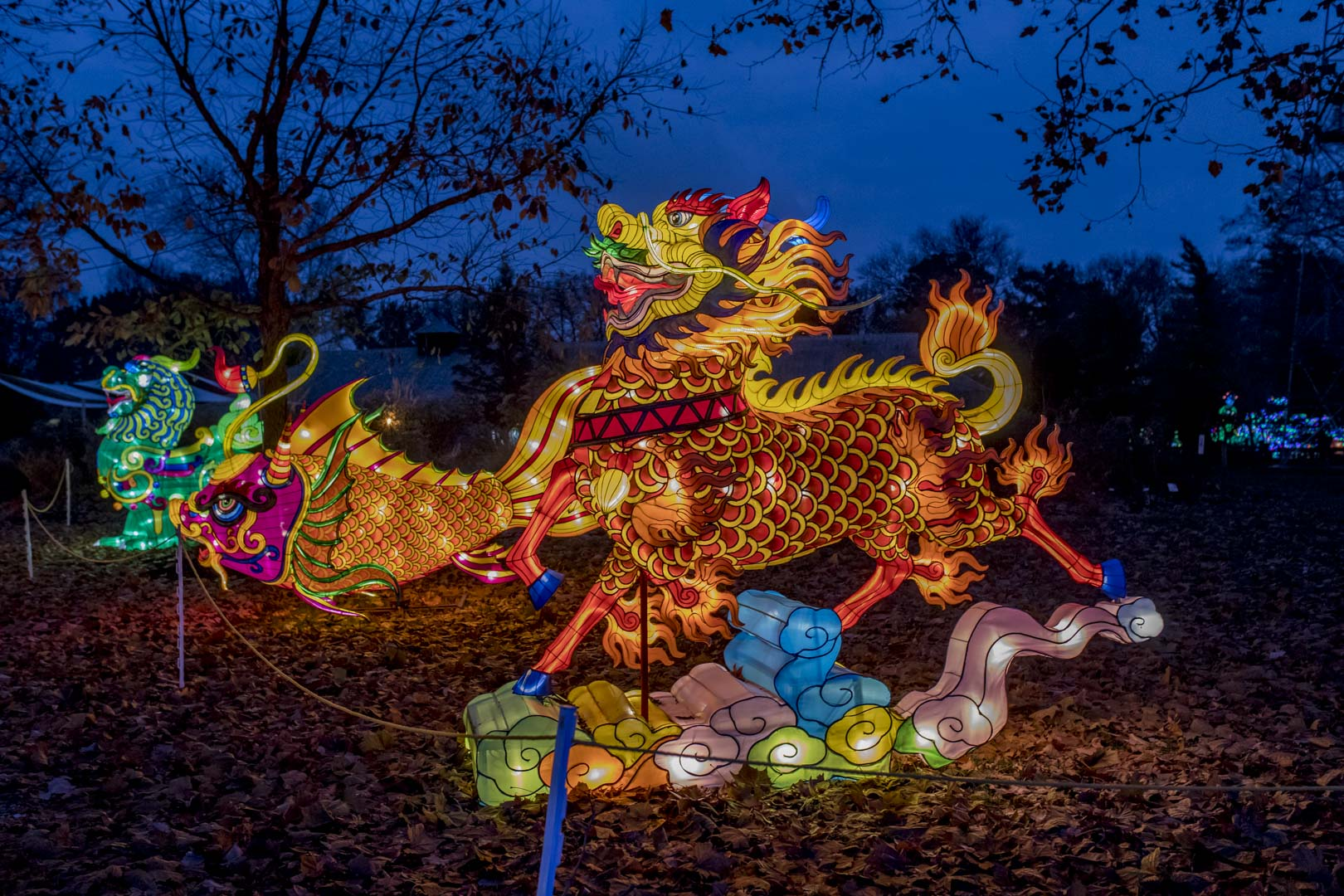 bellingrath garden oriental dragon christmas lights | Kick Off Your Holiday Weekend At Dragon Lights, The ...