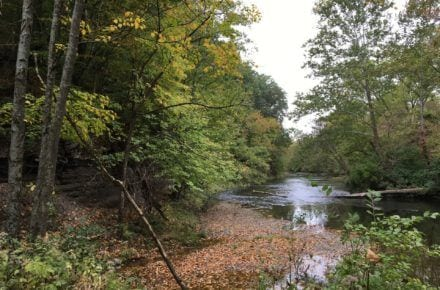 Metro Parks Will Open Its Own Hocking Hills-Like Park In Franklin County